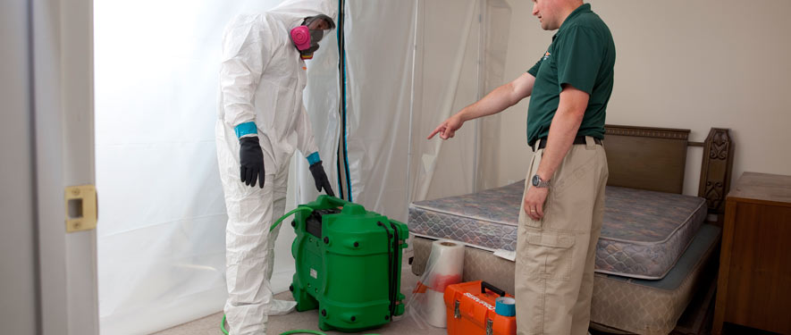 Greenville, SC mold removal process